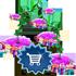 emptyrowsalejan2020package2_small.png